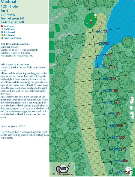Medinah Hole 12 Board Version